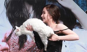 Min Young bối rối với 'bạn diễn' mèo