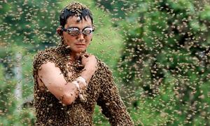 Để ong bám quanh cơ thể