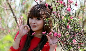 Miss Teen Quỳnh Anh khoe dáng bên vườn đào