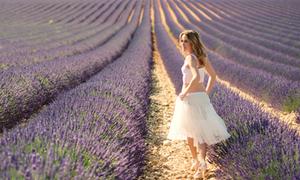 Lãng mạn ở Provence