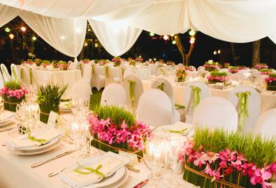 Đám cưới xanh và hồng ở Phan Thiết