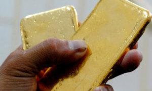 Osin trộm vàng của chủ