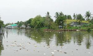 Sông nước Cà Mau thành 'túi rác'