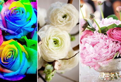 6 loại hoa ý nghĩa cho đám cưới