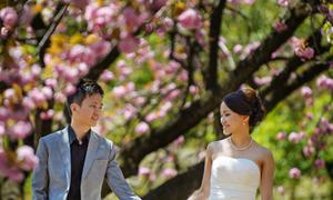 Ảnh cưới mùa hoa anh đào Nhật Bản