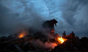 Vợ thoát chết khỏi MH370, chồng thiệt mạng vì MH17