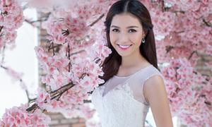 Miss Bích Khanh đẹp tinh khôi