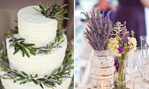 Lavender thơm ngát trang trí đám cưới