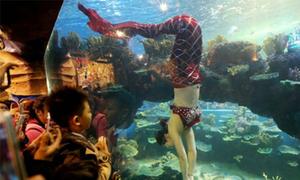 Một ngày làm việc của 'nàng tiên cá' ở Trung Quốc