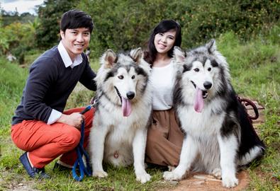 Uyên ương chụp ảnh cưới ở Đà Lạt cùng chó cưng