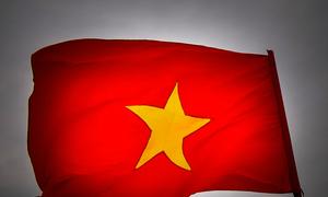 Tôi không phải fan Việt Nam, tôi là người Việt Nam