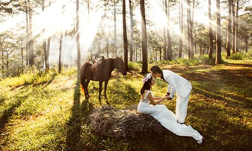 Ảnh cưới huyền ảo ở Đà Lạt của cặp đôi bác sĩ