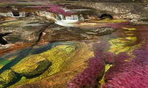 Dòng sông cầu vồng đẹp nhất thế giới