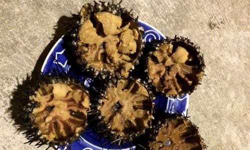 Nhum biển đủ món ngon ngất ngây