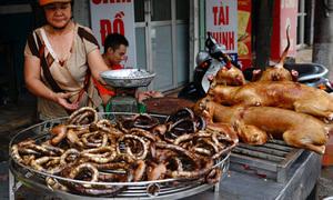 Các món ăn khiến du khách khắp thế giới ghê rợn