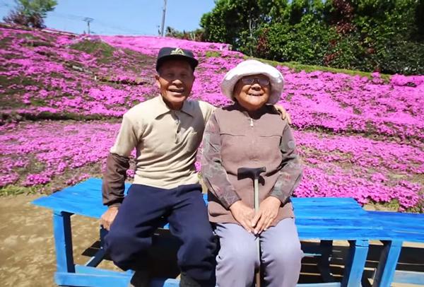 Theo Rockernews24, mảnh đất này từng là trang trại sản xuất bơ sữa và pho mát. Năm 1956, nó trở thành nơi sinh sống của vợ chồng ông bà Kurosi sau khi họ kết hôn. Cả hai cùng nhau chăm sóc một đàn bò 60 con và hai đứa con. Tuy cuộc sống vất vả nhưng họ vẫn luôn yêu thương, động viên nhau, với hy vọng một ngày nào đó sau khi nghỉ hưu sẽ cùng thực hiện chuyến du lịch vòng quanh Nhật Bản.