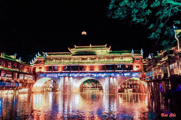 6-trieu-va-chuyen-di-phuong-hoang-co-tran-hot-khap-facebook-13