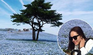 Chị em Phương Linh choáng ngợp giữa cánh đồng hoa xanh