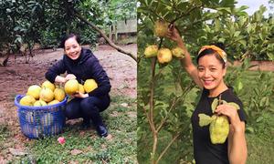 Nhà vườn bạt ngàn cây ăn quả của gia đình Chiều Xuân