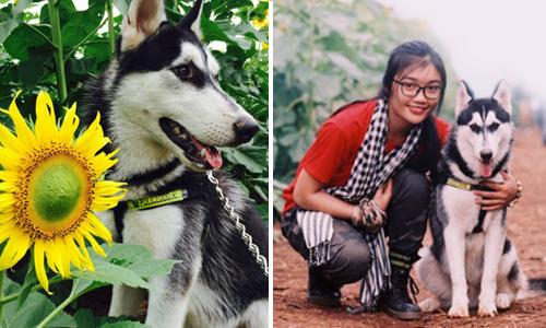Cô gái cùng cún cưng 'nắm tay nhau đi khắp thế gian'