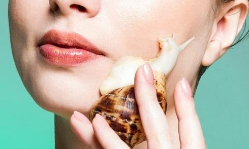10 điều có thể bạn chưa biết về nhớt ốc sên trong làm đẹp
