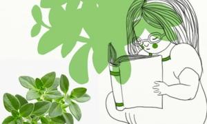 10 loại thảo dược trong bếp có tác dụng chữa bệnh tuyệt vời