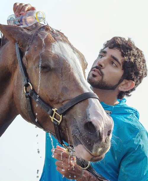 a private stable, but he also defends his countrys honor at international horse racing venues. His achievements include taking gold at the 2014 World Equestrian Games in France. The heir to the Dubai throne also supports several animal welfare charities.