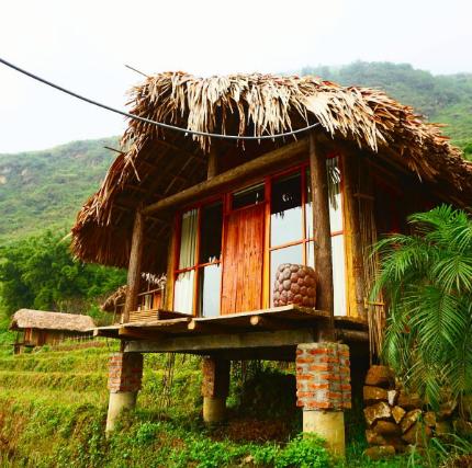 hinh-anh-o-eco-palms-house-10