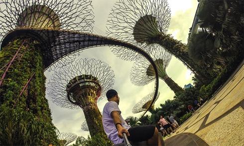 Một mình lạc lối ở Singapore