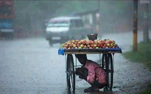 Khoảnh khắc làm người xem chạnh lòng mỗi mùa mưa tới.