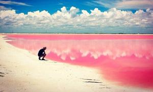 Bãi biển màu hồng huyền ảo như trong cổ tích