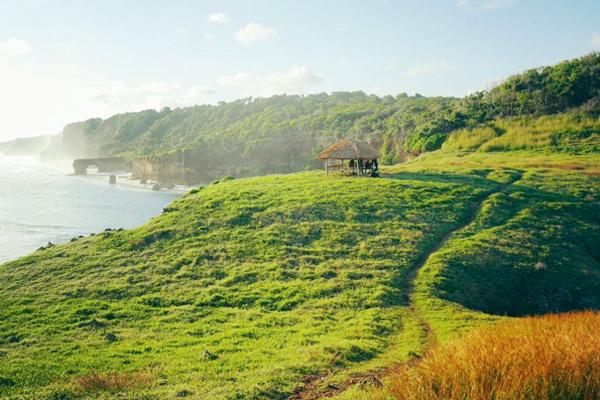 Con đường núi đến hồ có rất nhiều cây xanh, đồng cỏ nhiệt đới, tuy nhiên nơi này khá kỳ lạ vì không có động vật nào sinh sống.