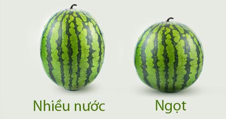 bi-kip-kho-tin-tru-dua-hau-tuoi-suot-6-thang-cua-nguoi-an-do-4