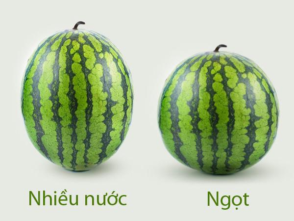 meo-chon-dua-hau-qua-nao-cung-ngot-2