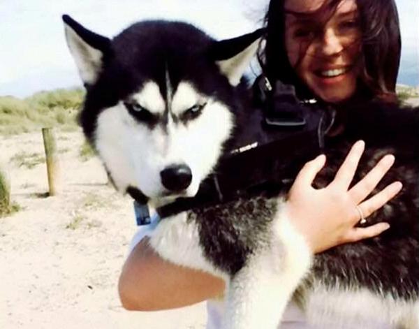 Hiện tài khoản Instagram của Anuko có tới hơn 11.000 người theo dõi. Sự nổi tiếng của con vật cũng đã giúp cho Jasmine, một nữ sinh viên ngành y, gây quỹ được 20.000 bảng Anh (khoảng 27.000 USD). Cô chủ trẻ này cho biết đã nhận được nhiều lời đề nghị cho Anuko làm mẫu và hy vọng con chó cưng sẽ giúp cô có đủ tiền để trang trải cho việc học.