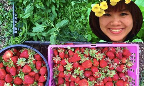 Vườn rau sạch rộng 500 m2 của mẹ Việt ở Czech