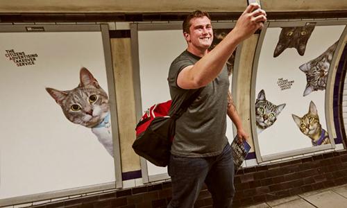 Ga tàu lạ mắt với hình ảnh những chú mèo
