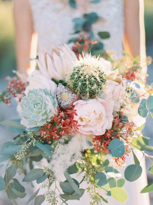 [Caption]Loại hoa này trước đây chỉ là cây cảnh, họ gần giống với xương rồng, nhưng hiện nay, các chuyên gia về hoa đã sử dụng cả loại hoa cứng cáp này để kết cùng hoa cưới.
