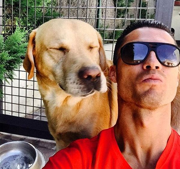 Kình địch của C. Ronaldo là Messi cũng có sở thích nuôi chó. Siêu sao Argentina đang dành tình cảm lớn cho chú chóngao dòng Dogue de Bordeaux.