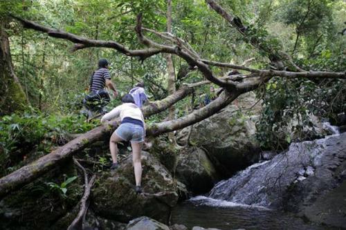 Muốn xuống thác, bạn phải đi bộ quãng đường 1 km. Và muốn qua cả 7 tầng thác, chỉ có cách duy nhất là lội dọc con suối chảy trên những hốc đá lớn. Những ngày mùa khô, dòng nước hiền hòa bao nhiêu thì đến mùa mưa, suối cuồn cuộn chảy xiết bấy nhiêu. Đó chính là lý do bạn nên chọn đi vào mùa khô để hành trình khám phá thác Tà Ngào được trọn vẹn.