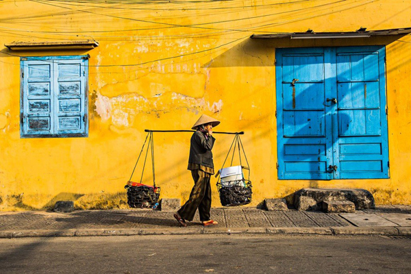 Tại sao lại là màu vàng? Một số người tin rằng nó tượng trưng cho tiền bản quyền. Có người lại rất thực tế là màu vàng hấp thụ nhiệt ít hơn, phù hợp với khí hậu ẩm nhiệt đới của Việt Nam. Dù thế nào thì màu sắc này đều được tôn kính trong văn hóa Việt, tượng trưng cho sự may mắn, niềm tự hào, sự giàu có và tôn trọng. Hầu hết các gia đình người Việt đều có một bàn thờ tổ tiên, được trang trí bằng nhiều đồ trang trí và hoa màu vàng.
