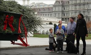 Bà Obama nhận cây thông cuối cùng ở Nhà Trắng