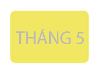 chon-nuoc-hoa-theo-thang-sinh-cho-cac-quy-co-5