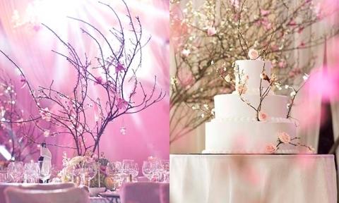 Cặp đôi Hà Nội mang cả 'rừng' đào phai vào đám cưới