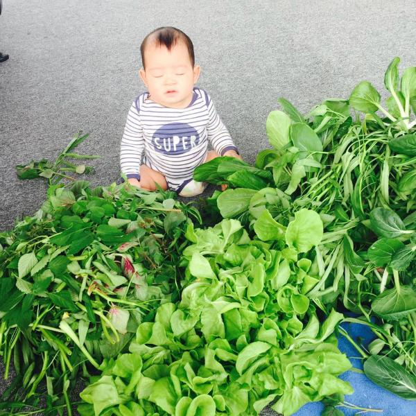 Con trai út của Lý Hải - Minh Hà ngủ gật siêu đáng yêu, cậu bé bị bố mẹ dìm hàng: Nhờ bán rau tí mà ngủ gục vậy nè.