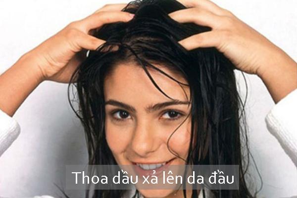 Dầu xả chỉ nên thoa ở 1/2 đuôi tóc, tránh thoa trực tiếp lên da đầu.