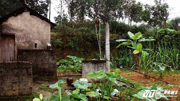 Ngôi nhà cũ gắn bó với cô Tần hơn 20 năm.