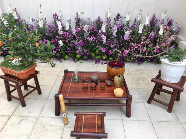 nu-chu-nhan-lam-dep-biet-thu-trang-bang-hang-ngan-canh-violet-9