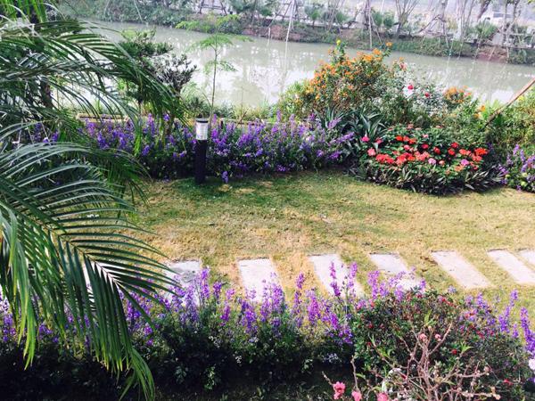 nu-chu-nhan-lam-dep-biet-thu-trang-bang-hang-ngan-canh-violet-1