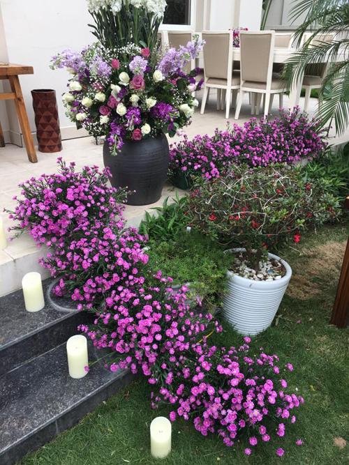 nu-chu-nhan-lam-dep-biet-thu-trang-bang-hang-ngan-canh-violet-10